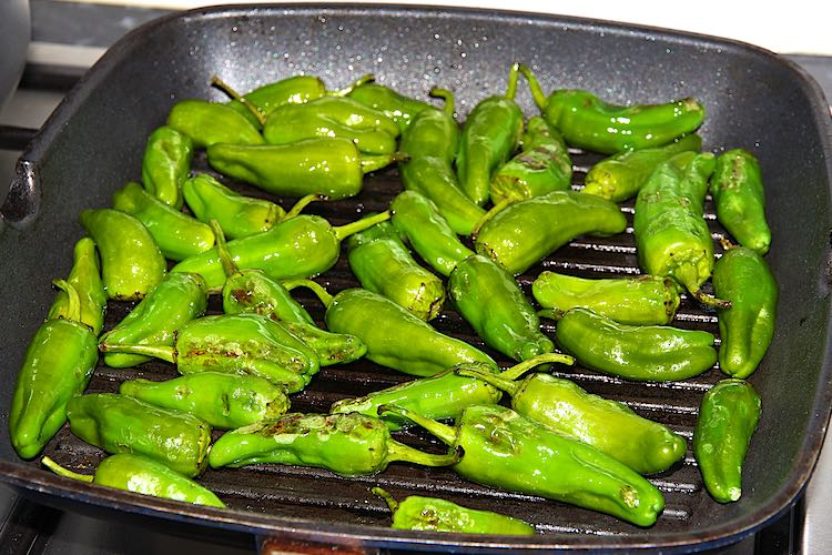 Padron pepers grillen in een grillpan of koekepan