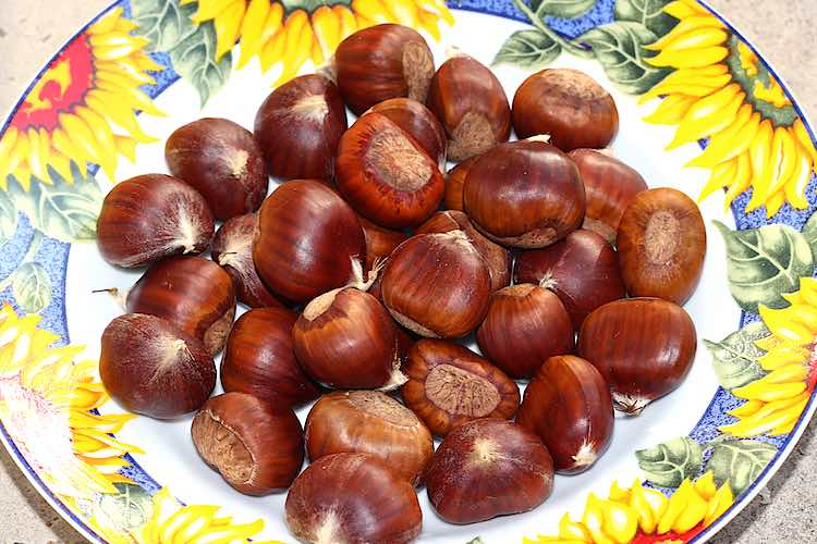 edible chestnuts ready to roast